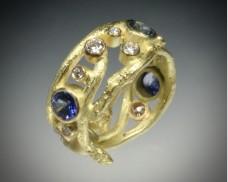 Sapphire diamond twig ring